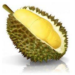 20100527164036_durian.jpg