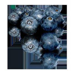 20100527164141_blueberry.jpg